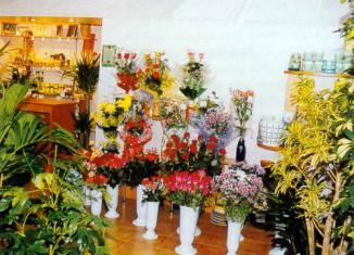 Два молодых человека ограбили цветочный магазин в Уфе