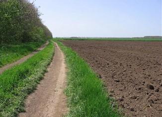 Стало известно о том, что в Башкирии у предпринимателей забирают земли