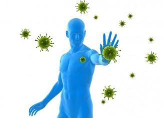 Главный враг нашего иммунитета